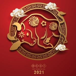 Previsões para o Ano do Boi de Metal Yin 辛丑
