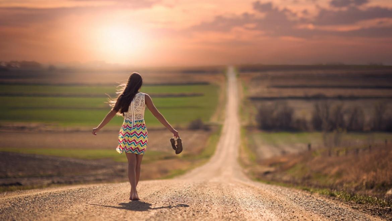 Setor 1: Cria o Teu Caminho de Vida